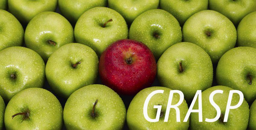 GRASP standard Srbija