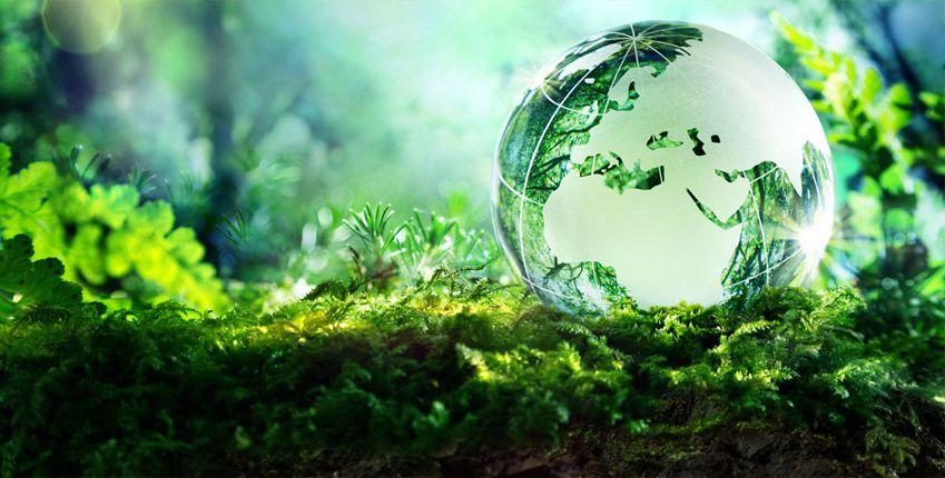 ISO 14001 standard - Sistem menadžmenta životnom sredinom