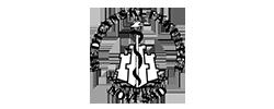 medicinski-fakultet-logo